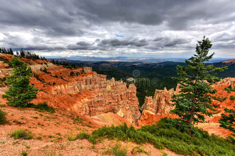 Bryce Canyon National Park stock foto's