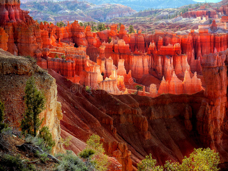 Bryce Canyon National Park imagens de stock royalty free