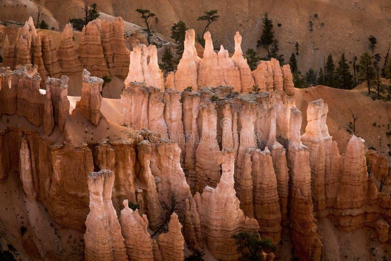Bryce Canyon National Park fotografie stock