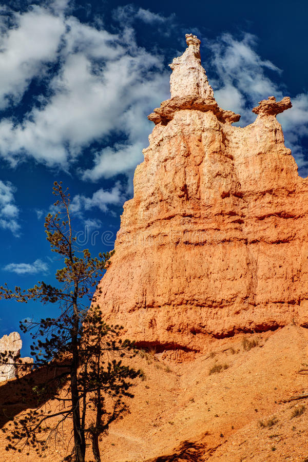 Bryce Canyon National Park Hoodoo royalty-vrije stock foto's