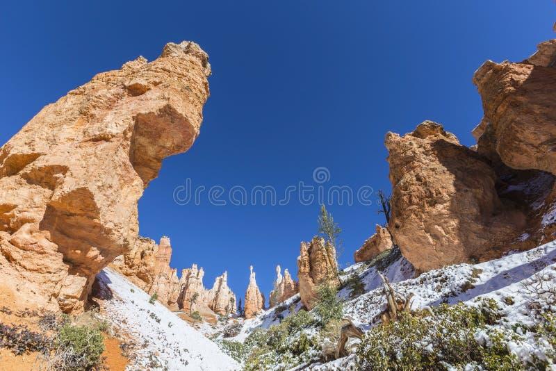Bryce Canyon National Park Hoodoo-Vormingen royalty-vrije stock afbeeldingen