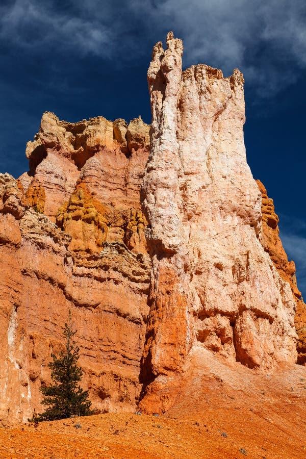 Bryce Canyon National Park Hoodoos stock afbeelding
