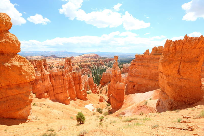 Bryce Canyon National Park landskap, Utah, USA arkivbilder
