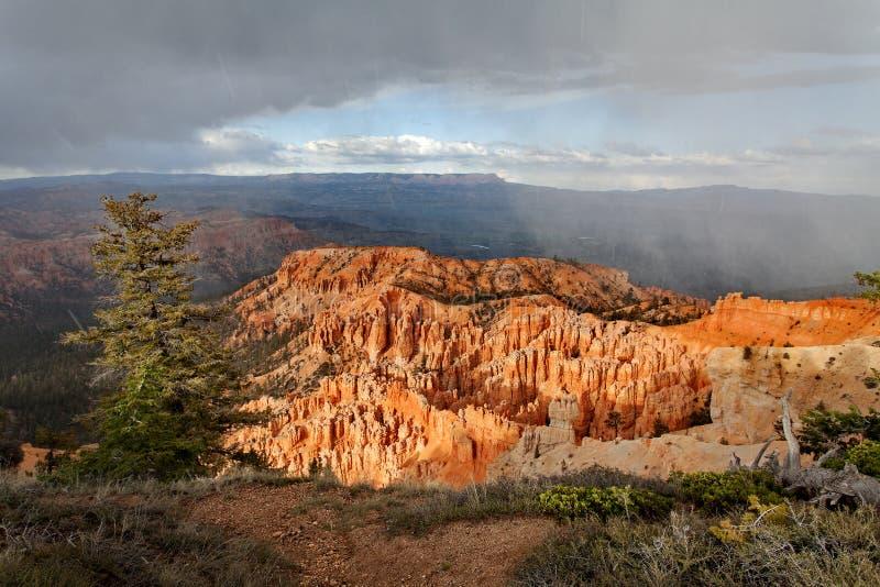 Bryce Canyon National Park - Schneesturm bei Sonnenuntergang, die Vereinigten Staaten von Amerika stockbilder