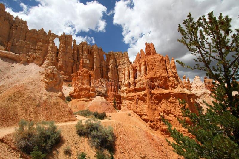 Bryce Canyon National Park sikt royaltyfria bilder