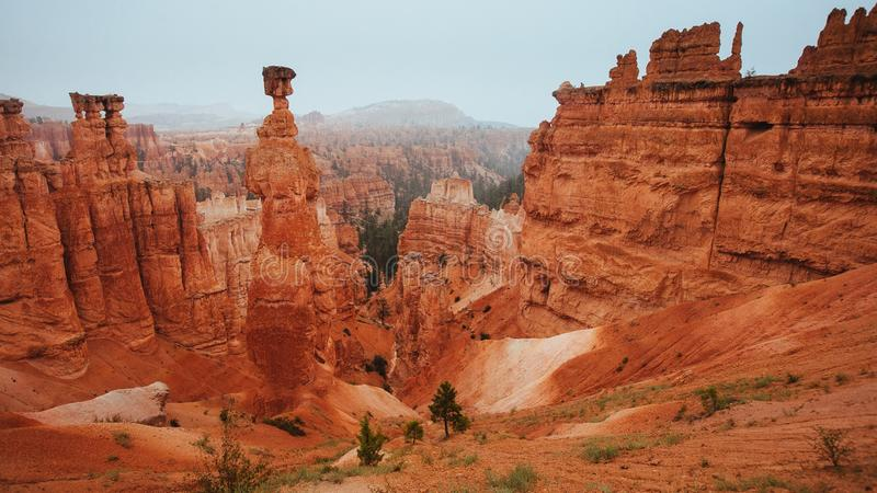 Bryce Canyon National Park: Thor's Hammer royalty free stock photo