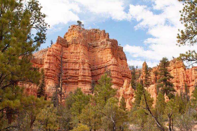Bryce Canyon National Park, Utá, Estados Unidos da América Parque nacional na fuga do laço do Navajo imagem de stock