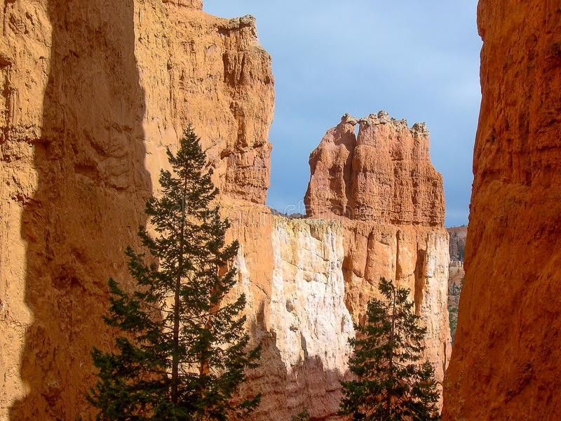 Bryce Canyon National Park, Utá, U S A imagens de stock royalty free