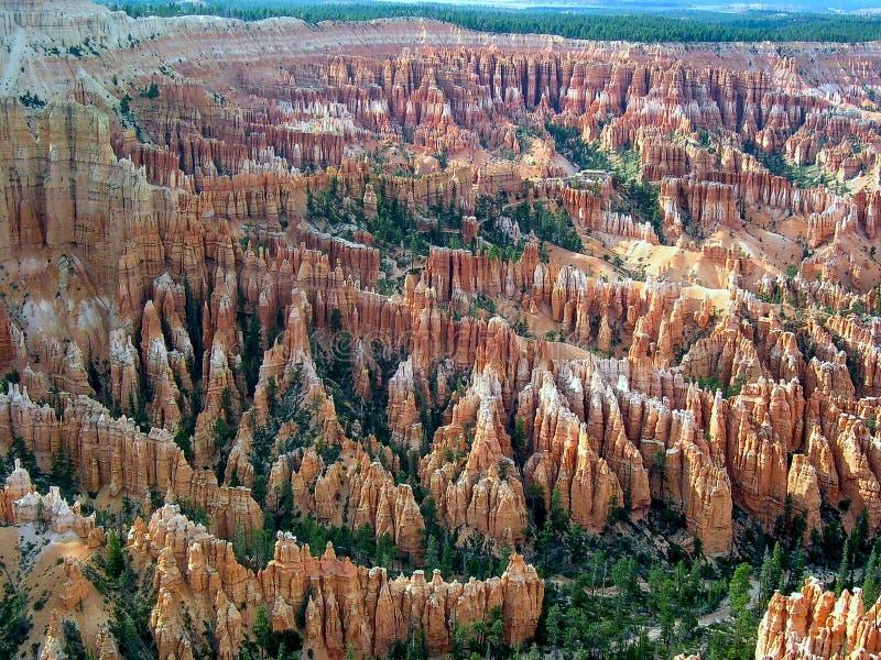 Bryce Canyon National Park, Utá, U S A fotografia de stock royalty free