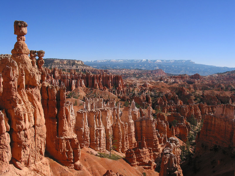 Bryce Canyon National Park in Utah. stock images