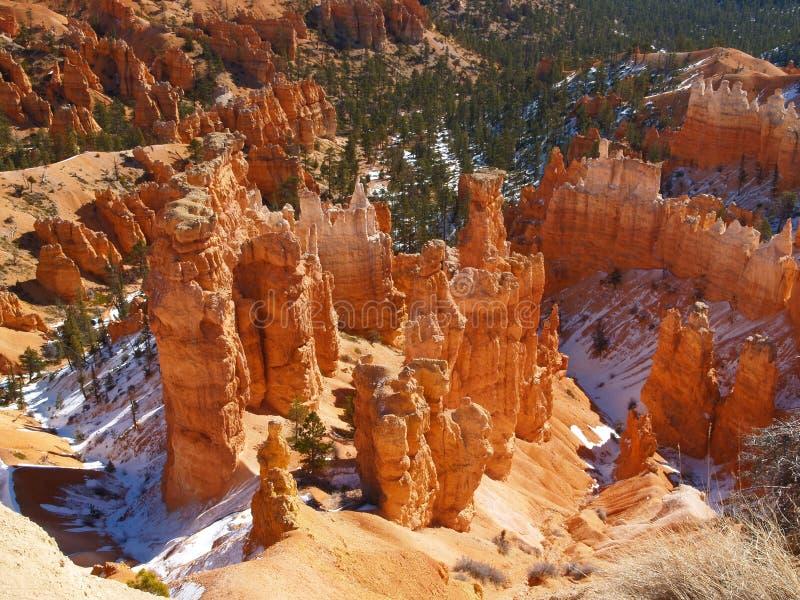 The Bryce Canyon National Park, Utah royalty free stock image