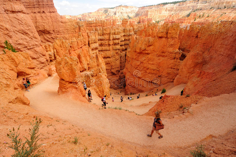 Download Bryce Canyon National Park, Utah Editorial Photography - Image: 23120102