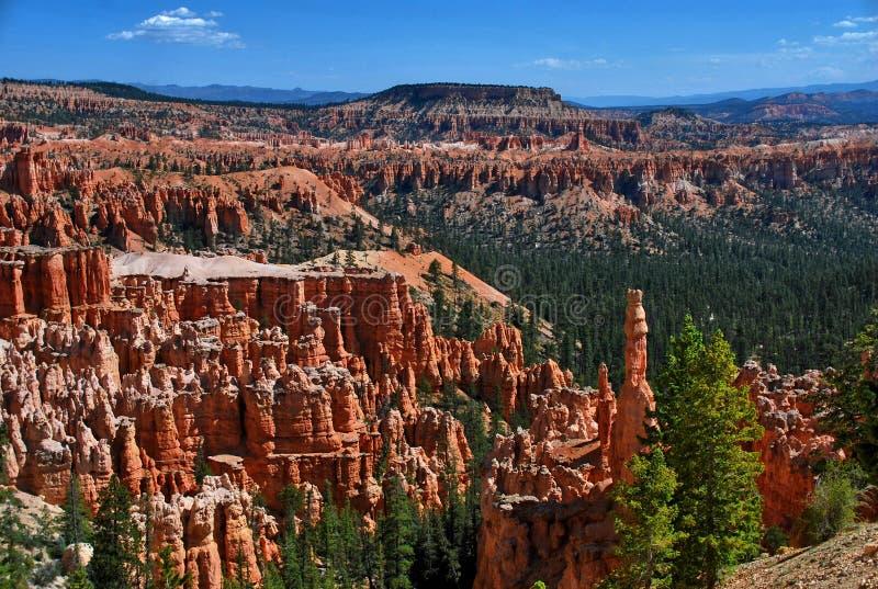 Bryce Canyon National Park, Utah, de V stock afbeeldingen