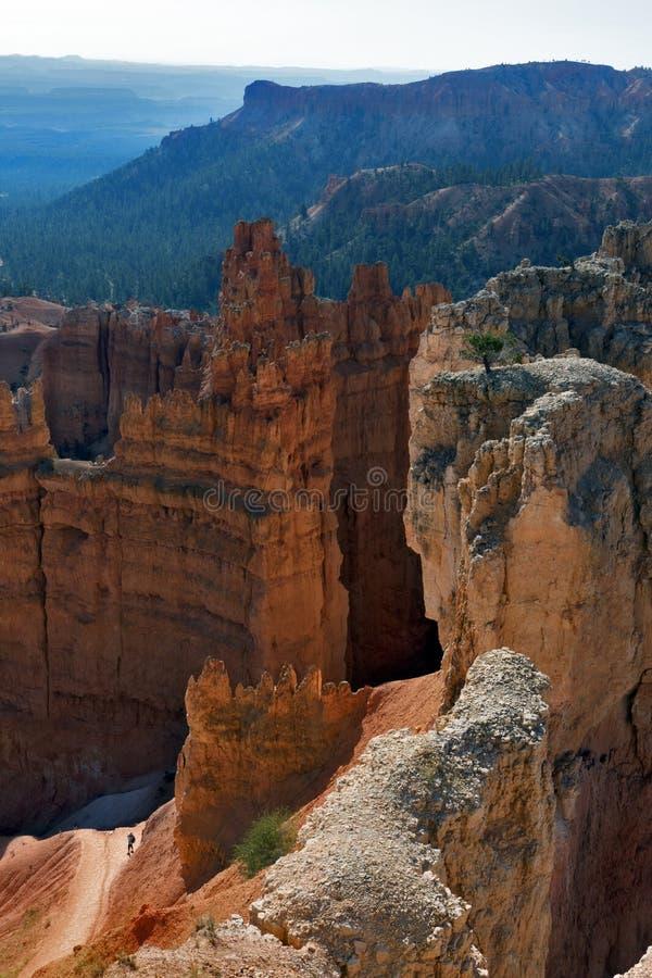 Bryce Canyon National Park, Utah, de V royalty-vrije stock fotografie
