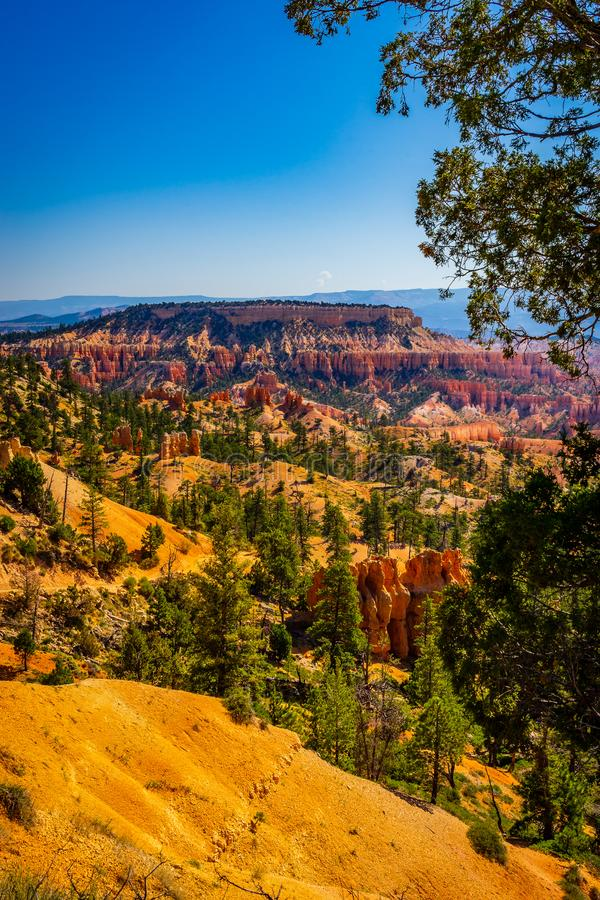 The Bryce Canyon National Park, Utah, United States. The Bryce Canyon National Park Utah United States royalty free stock image