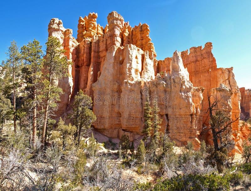 Bryce Canyon National Park Utah, Verenigde Staten royalty-vrije stock foto