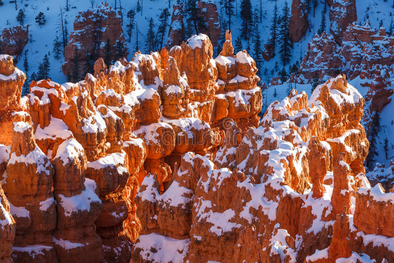 Bryce Canyon National Park Winter Landscape stock photography