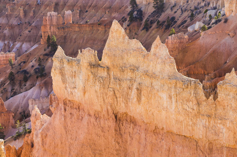 Bryce Canyon-ongeluksboden royalty-vrije stock foto