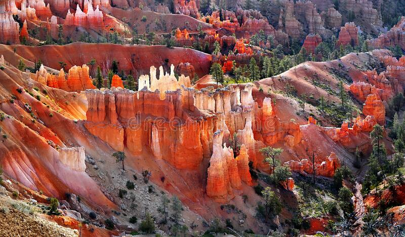 Bryce Canyon Sunrise Hoodoos Utah USA royaltyfria foton