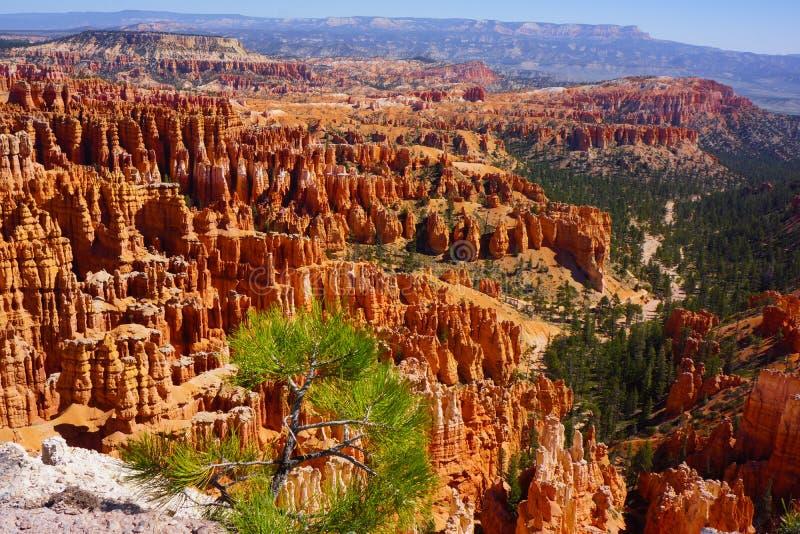 Bryce Canyon-Unglücksboten stockfotografie