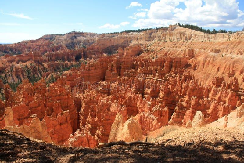 Bryce Canyon, Utah, America fotografia stock