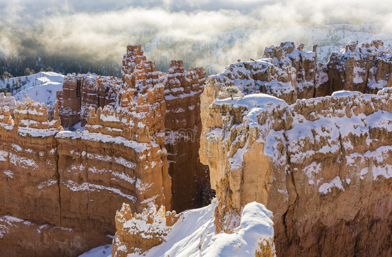 Bryce Canyon Wall Street Winter Silhouette stock image
