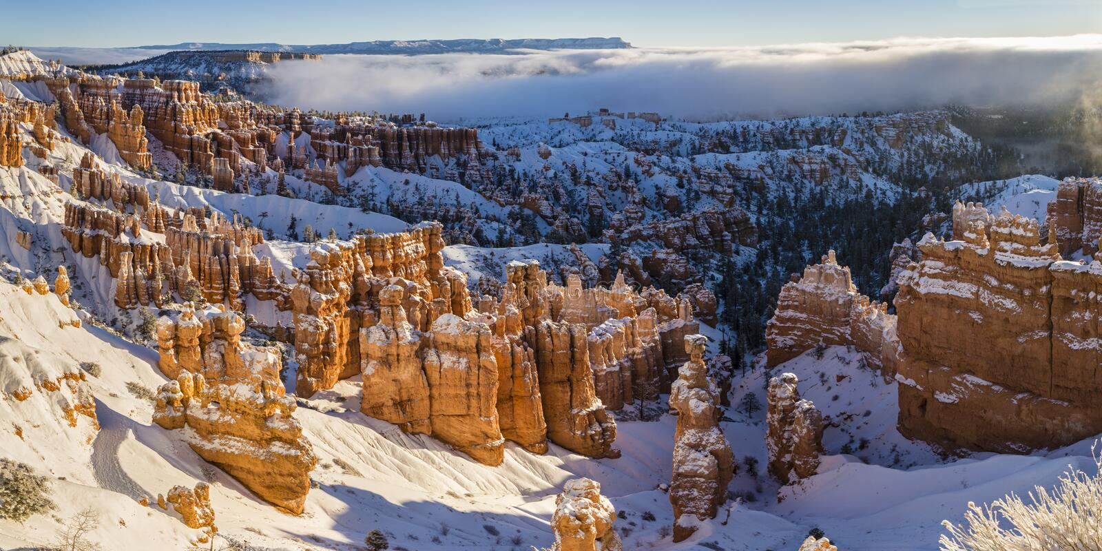 Bryce Canyon Winter Morning Panorama royaltyfri bild