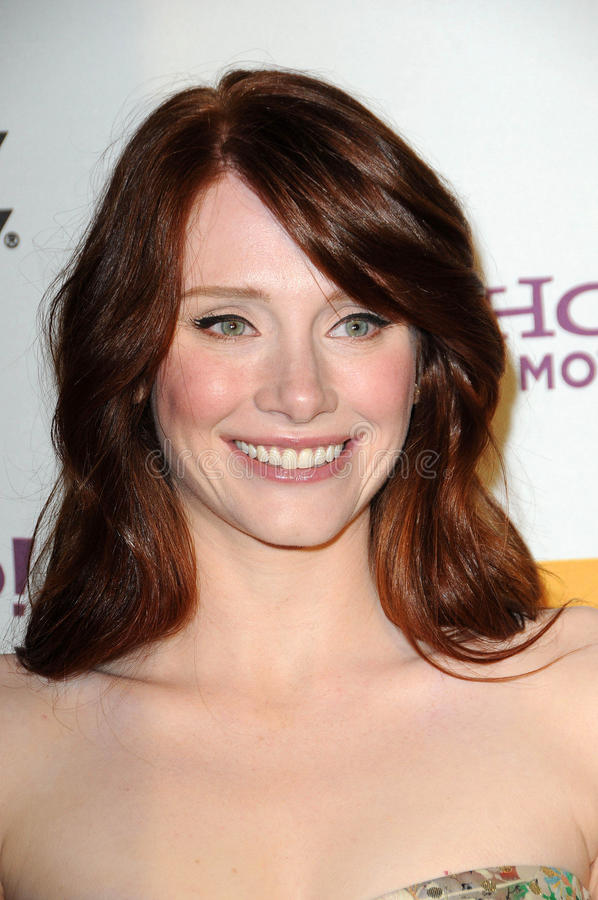 Bryce Dallas Howard. At the 14th Annual Hollywood Awards Gala, Beverly Hilton Hotel, Beverly Hills, CA. 10-25-10 royalty free stock photo