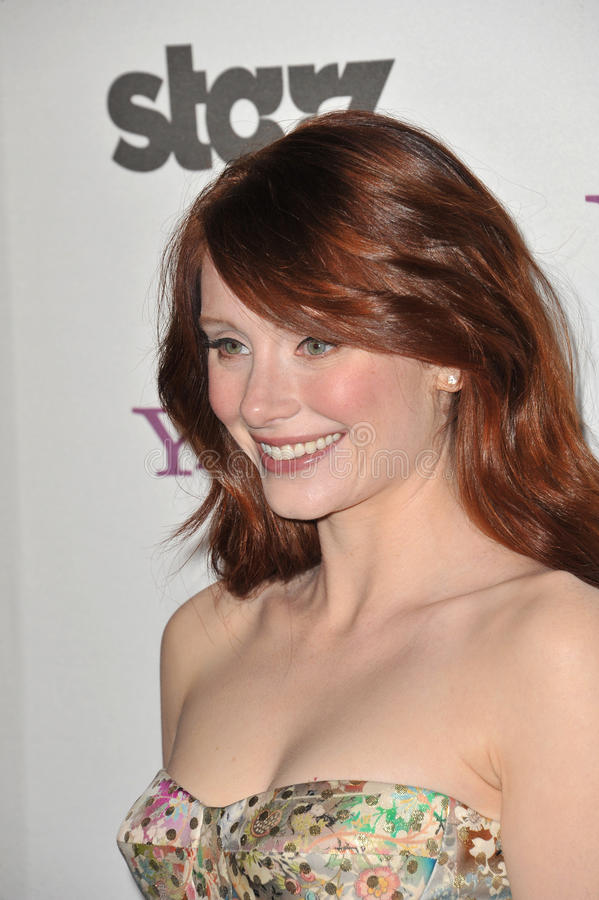 Bryce Dallas Howard. At the 14th Annual Hollywood Awards Gala at the Beverly Hilton Hotel. October 25, 2010 Beverly Hills, CA Picture: Paul Smith / Featureflash royalty free stock photography
