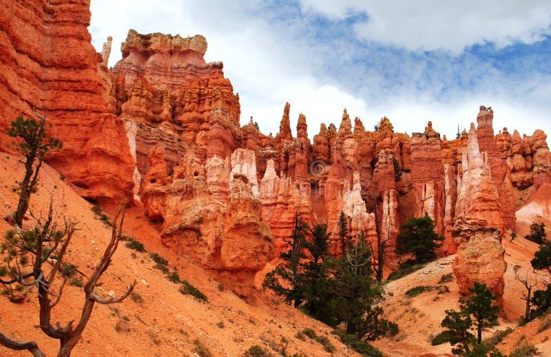 Bryce kanjonnationalpark royaltyfri bild