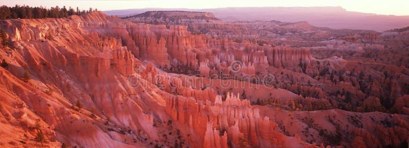 Bryce kanjonnationalpark, UT arkivfoto