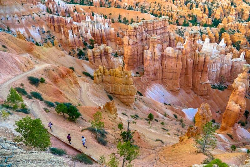 Bryce kanjonnationalpark, Utah, USA royaltyfri fotografi