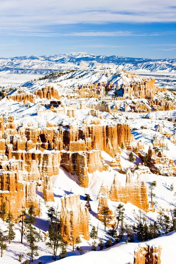 Bryce Schlucht-Nationalpark im Winter, Utah, USA stockfotografie