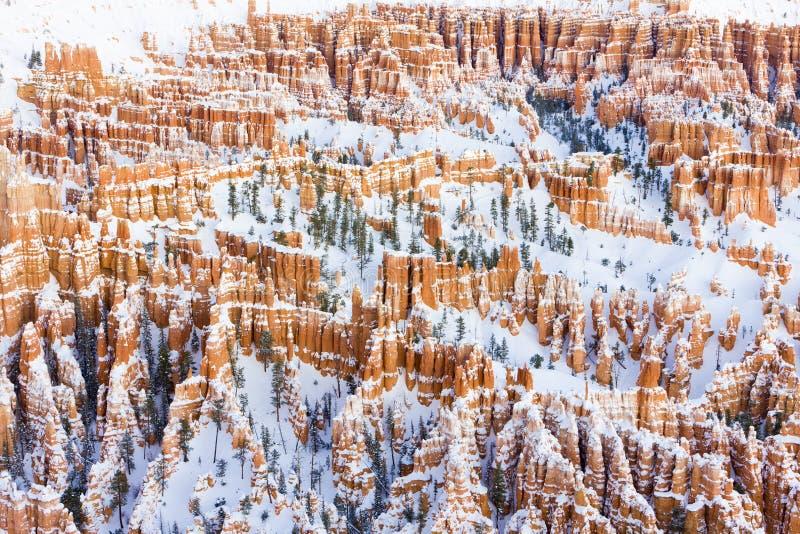 Bryce Schlucht-Nationalpark im Winter, Utah, USA lizenzfreie stockbilder