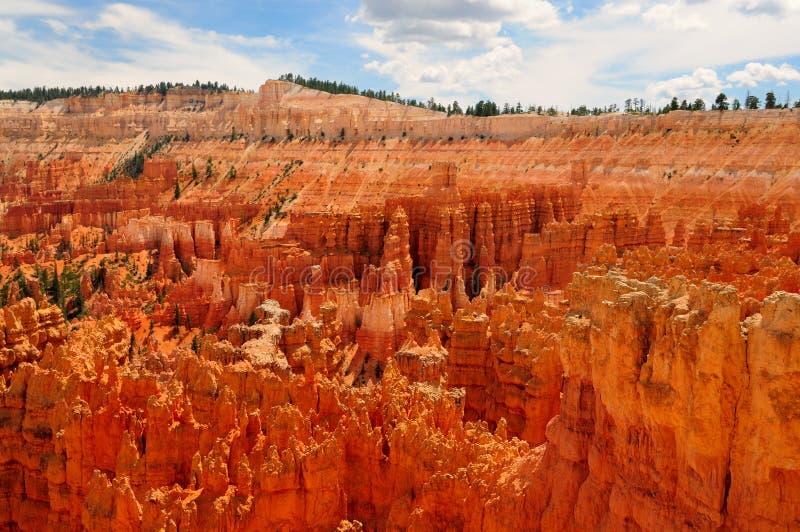 Bryce Schlucht-Nationalpark, Utah lizenzfreie stockfotos