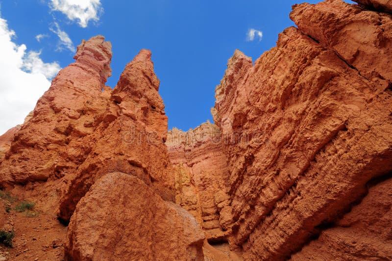 Bryce Schlucht-Nationalpark, Utah lizenzfreie stockfotografie