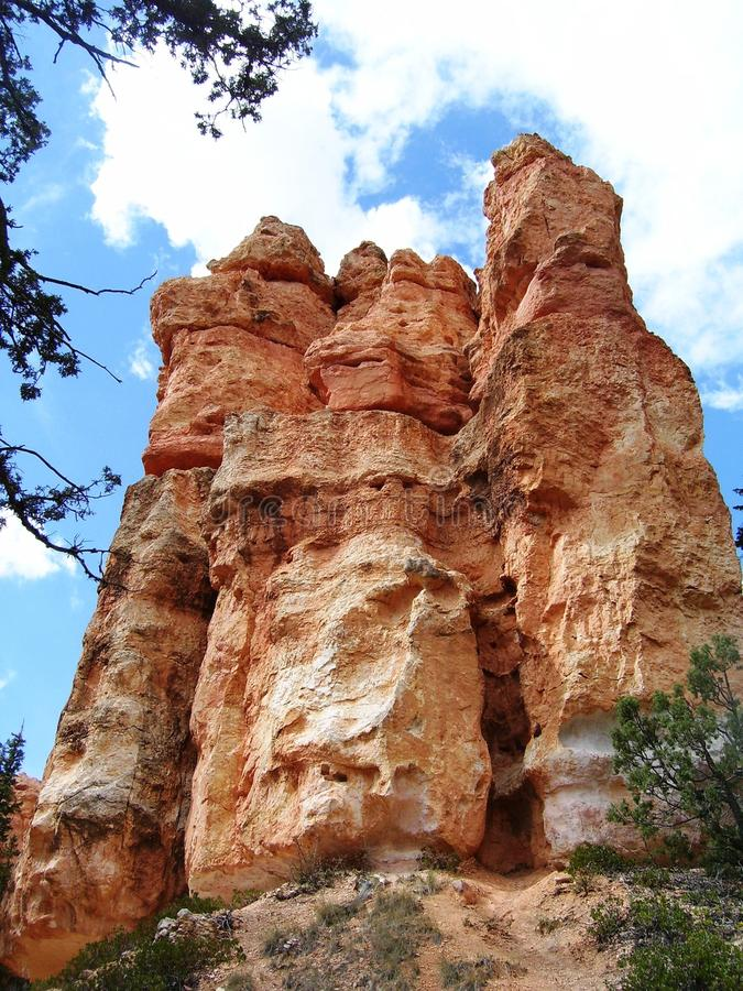 brycekanjonnationalpark royaltyfri fotografi