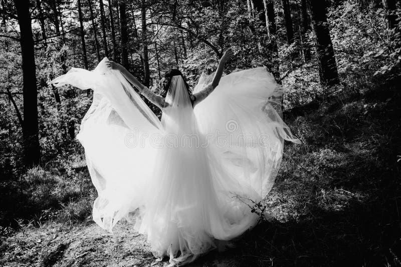 Brygga skogarnas verksamhet fantastiska klädbröllop arkivbilder