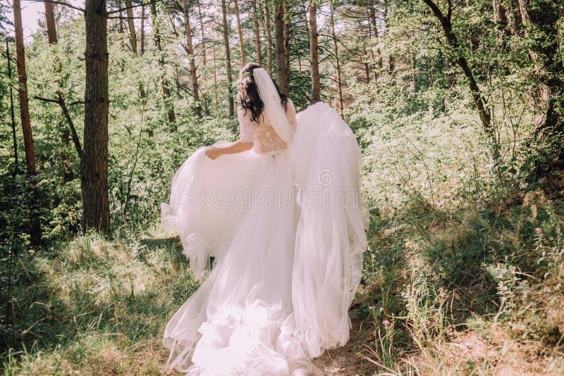 Brygga skogarnas verksamhet fantastiska klädbröllop royaltyfri fotografi