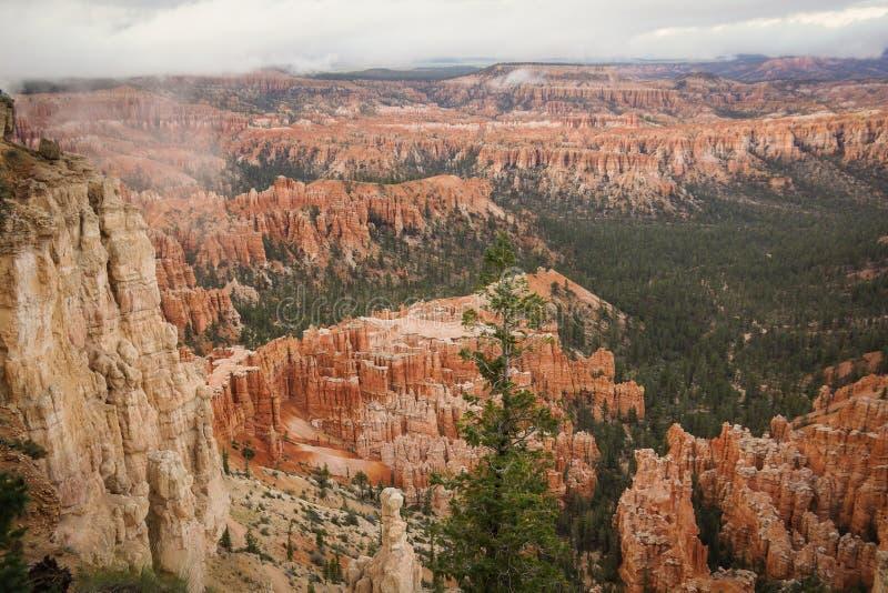 Bryka Canon Utah usa inspiracji punkt obrazy stock