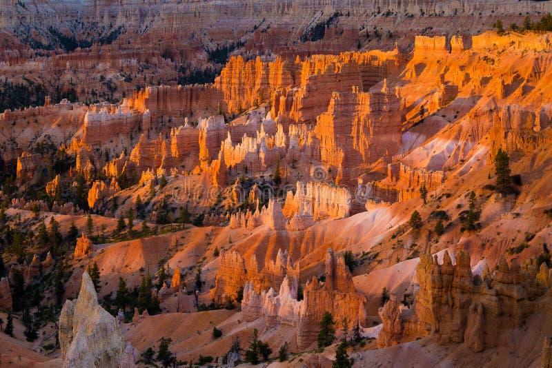 Bryka jaru park narodowy od wschód słońca punktu w wczesnego poranku świetle, Utah, usa obrazy stock