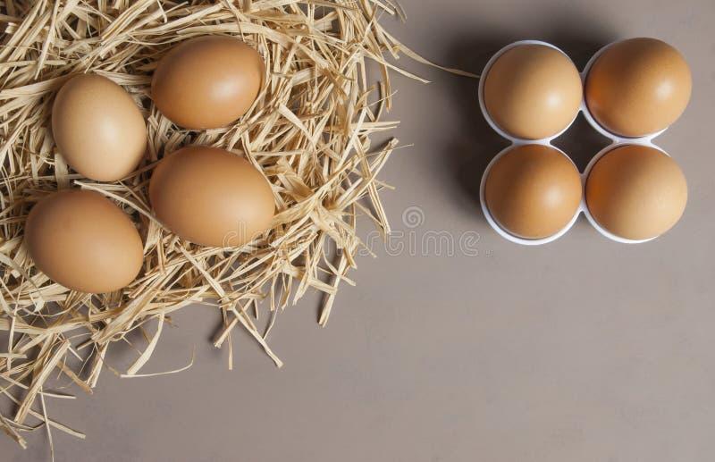 Bryna eller gulna nya lantgårdägg på sugrör, äggbakgrund arkivfoto
