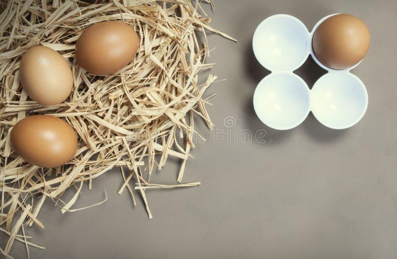 Bryna eller gulna nya lantgårdägg på sugrör, äggbakgrund royaltyfri fotografi