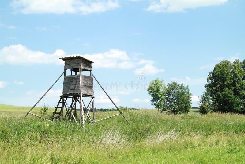 Download Bryony stock image. Image of meadows, blue, hiding, bush - 25420187