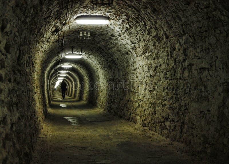 bryta den salt tunnelen