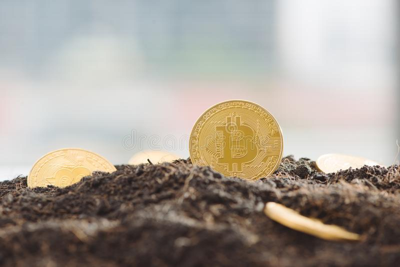 Bryta guld- Bitcoins Faktiskt cryptocurrencybegrepp royaltyfria bilder