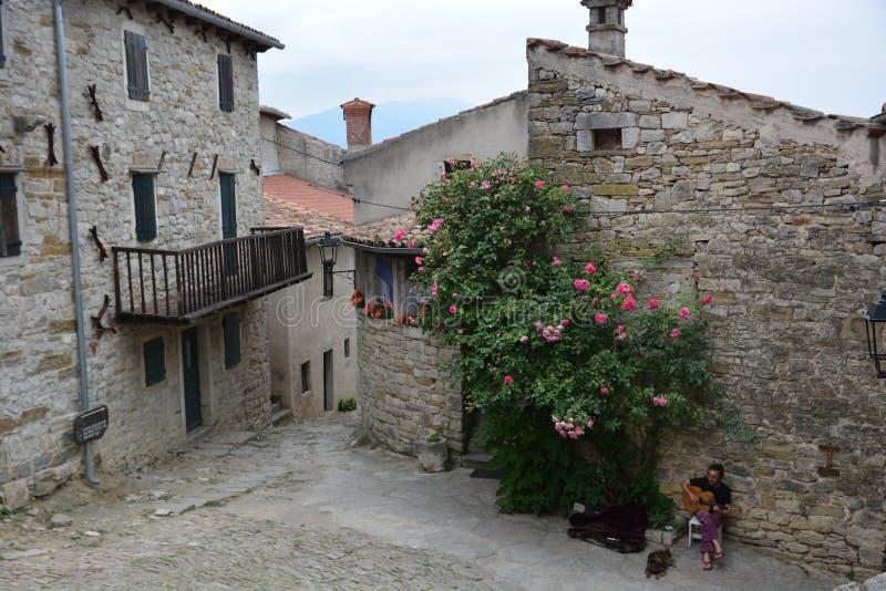 Brzęczenie w Chorwacja fotografia royalty free