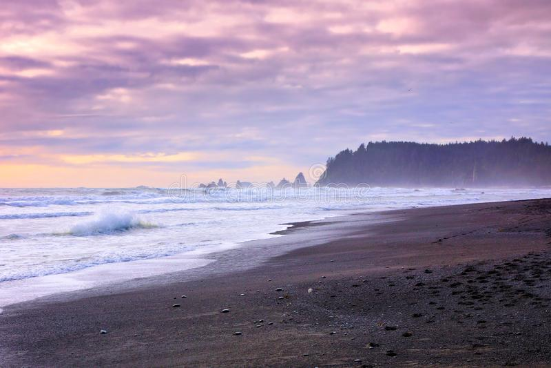 Brzeg kantor plaża przy zmierzchem, Olimpijski park narodowy, Waszyngton, usa zdjęcia royalty free