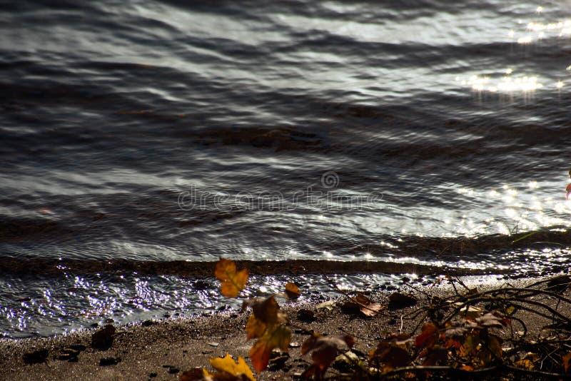 Brzeg piasek i świecenie na wodnej powierzchni zdjęcia royalty free