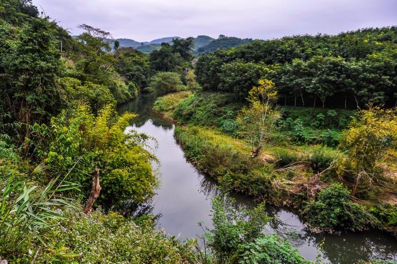 Brzeg rzeki krajobraz w Luang Nam Tha, Laos fotografia royalty free
